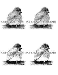 Bird A2 Digital Stamp Card Fronts